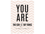 42x30cm Shabby Holzschild YOU ARE THE GIN TO MY TONIC...