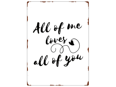 WANDSCHILD Metallschild ALL OF ME Liebe Partner Geschenk Shabby Dekoration