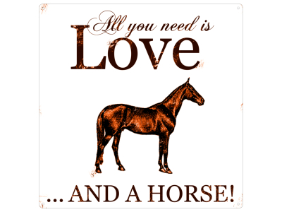 20x20CM METALLSCHILD Blech Dekoschild ALL YOU NEED HORSE Pferd Tier Liebe